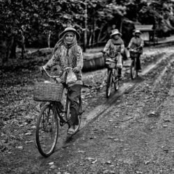 Three asiatic woman riding bicycles